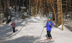 A couple of cross country skiers stopped on a trail