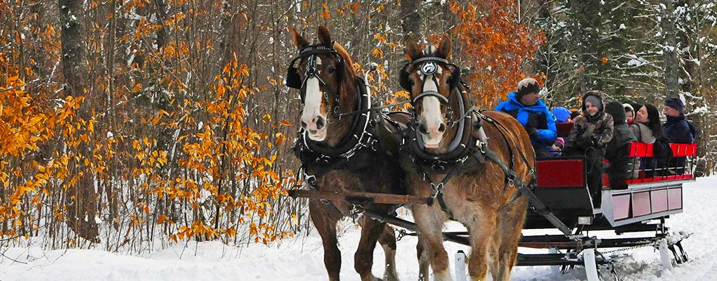 Sleigh Rides at Purity Spring Resort