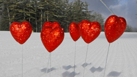Red valentine hearts stuck in to the snow